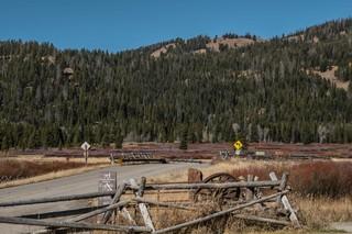 Rolls-Royce-Wyoming-Road-Trip-16-of-19
