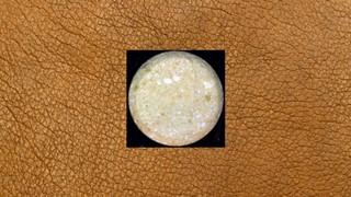 1541770282517-ecstasy-pille-beige-rund-ohne-logo