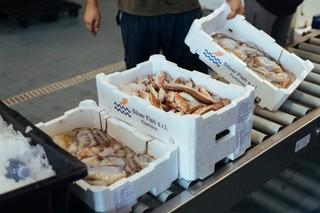 Asta-pesce-pesce-trasportato