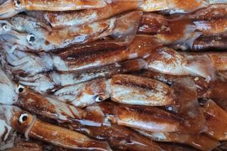 pesce-fresco-munchies-italia