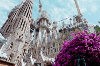 Balconing-Barcelona-Tourists-5-of-8
