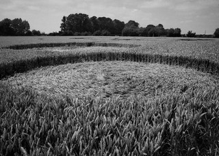 Crop circles in Norfolk