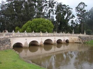 1542211605875-Puente_del_comun_2006