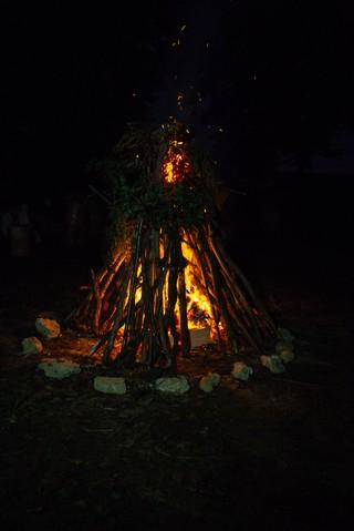 1542630276591-reportage-druides_Vice_HD_06