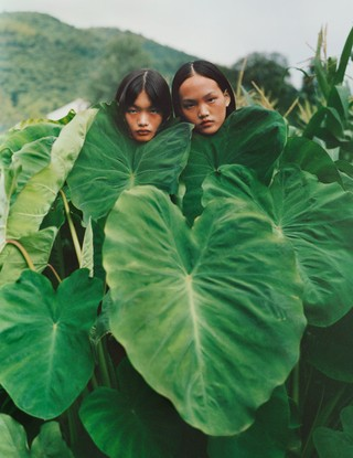 Two models standing behind leaves photographed by Alexandra Leese