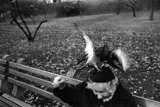 Richard Kalvar photographs a woman with two pigeons on her head