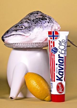 Norvège Tube Nourriture