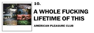 1543941035614-10-american-pleasure-club-a-whole-fucking-lifetime-of-this