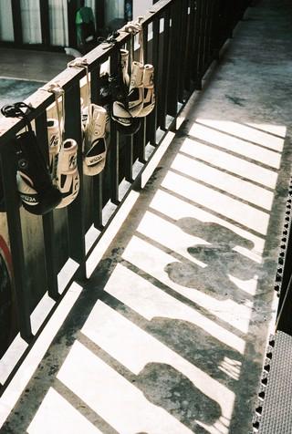 Bokshandschoenen hangen in de zon.