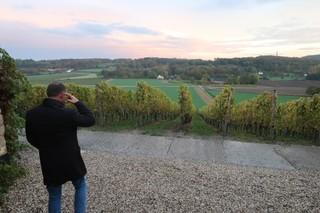 Mathieu en zijn wijngaard