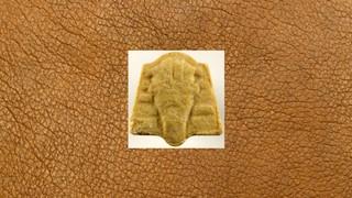 1544179299292-ecstasy-pille-beige-pharaoh