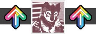1544199316830-sonic-fox