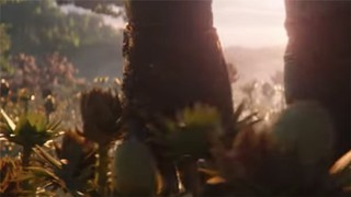 Thanos dragging his hand through some plants.