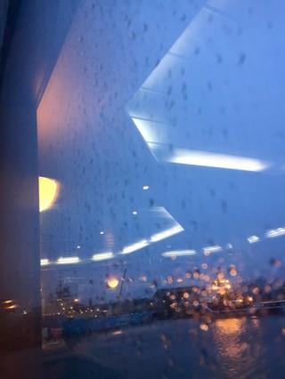 vicki king photographs a rainy window