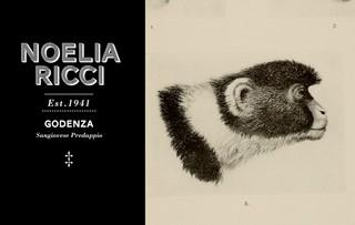 NOELIA-RICCI_GODENZA_ETICHETTA