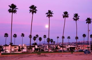 Beachfront homes on Balboa Island, Orange County. Photo by Richard Cummins / Getty