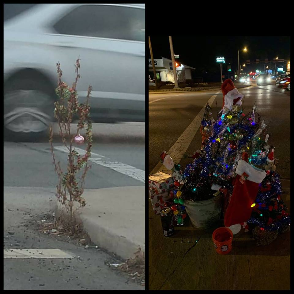 Christmas Weed.This Neighborhood Turned A Sad Dying Weed Into An