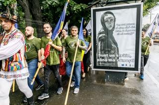 29-iulie-2018-Marsul-de-protest-pentru-apararea-limbii-romane-Sos-Cotroceni