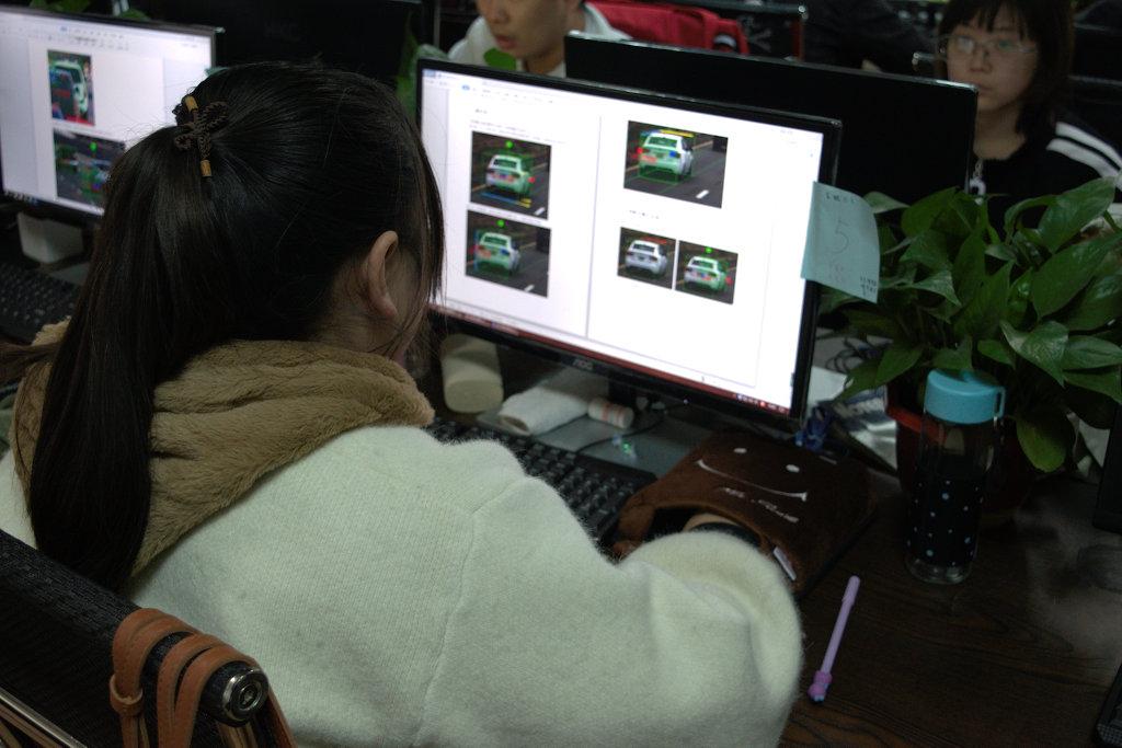 一名年轻女子研究汽车标签照片的说明。