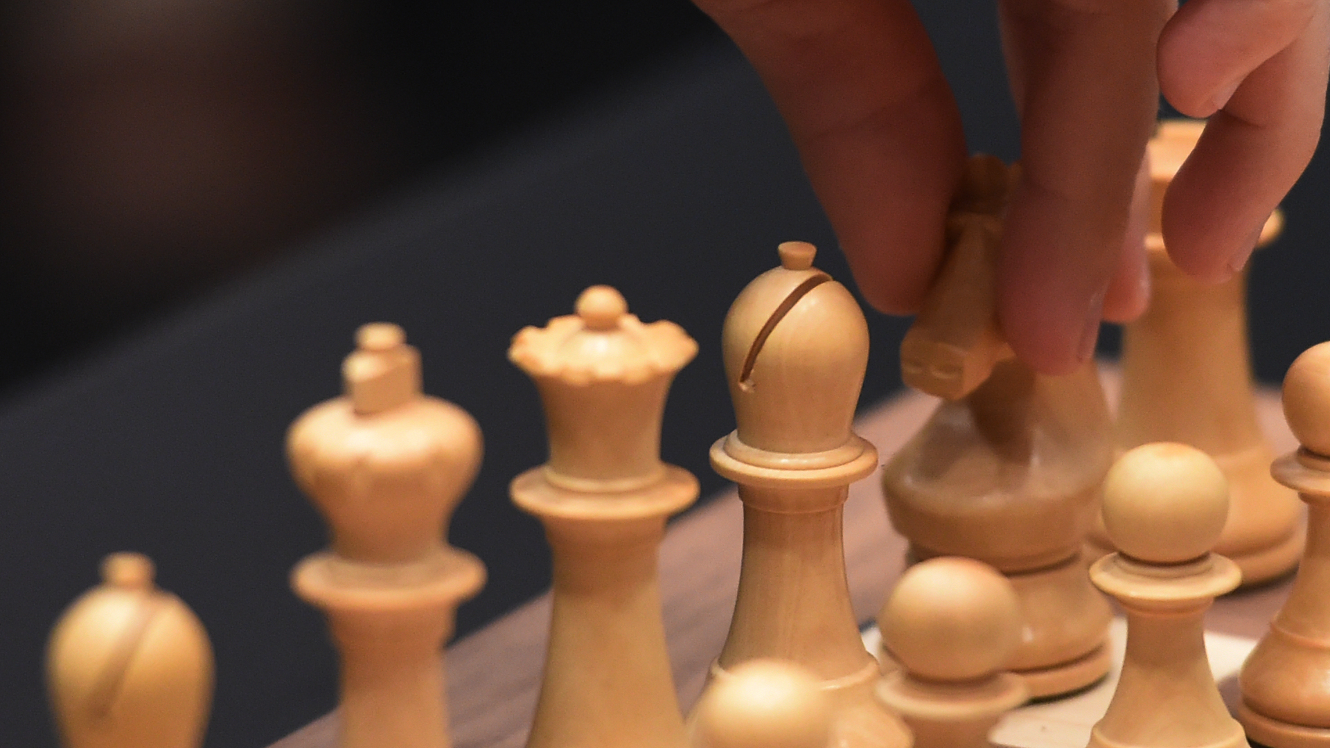 The Human Comedy of Chess: A Grandmasters Chronicles