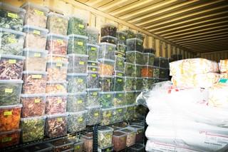 Amass lager af tørrede og fermenterede urter og planter.