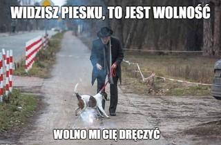 meme z Januszem Korwin-Mikkem