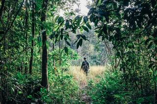 Best Travel Destinations 2019 Cambodia Conservation 2