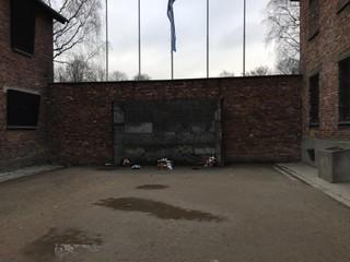 zidul-mortii