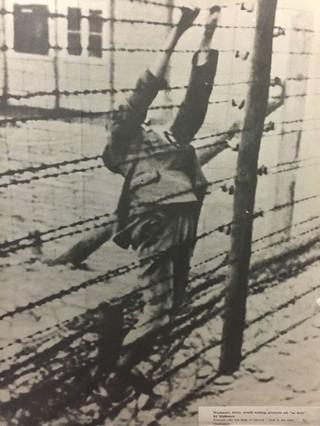 prizonier-sinucigas