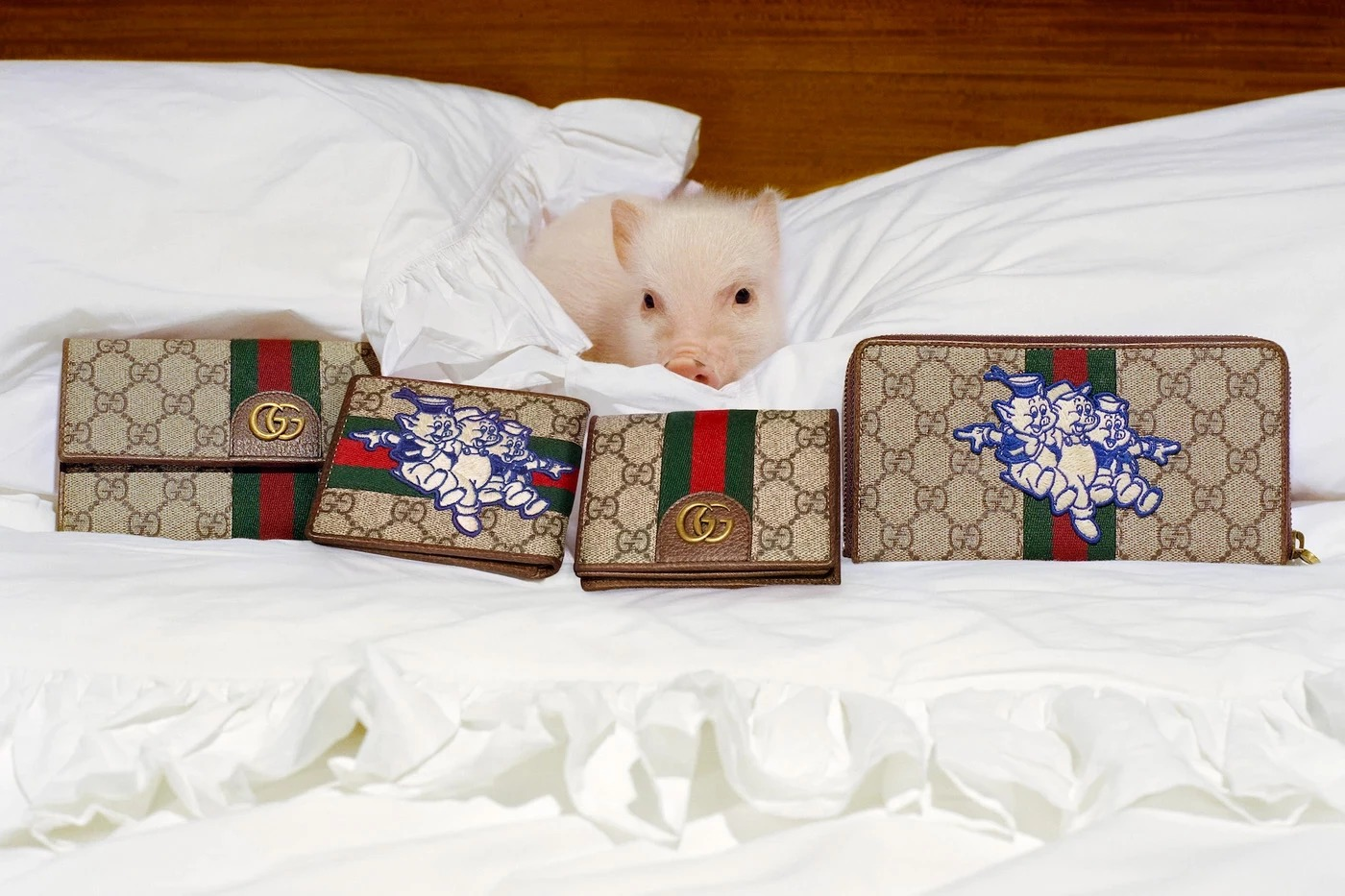 16186fa1c382fb ... lookbook -- to celebrate Chinese New Year. 1547207805904-guccipig5