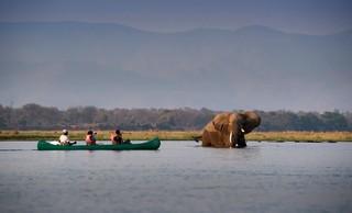 Canoe-the-Mana-Pools-National-Park-Zimbabwe-Best-Travel-Destination