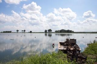 Ecrevisse Louisiane Katrina 11