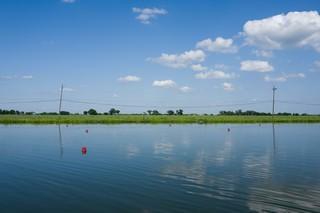 Ecrevisse Louisiane Katrina 12