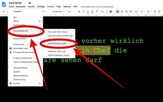 Screenshot: Ein Dokument aus Google Docs als PDF oder Word-Datei runterladen