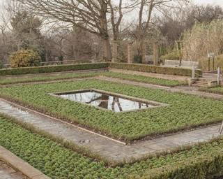 horni pond