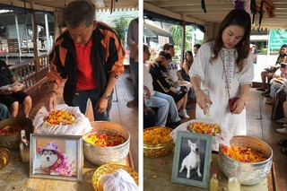 Dog-Funerals-Buddhist-Tradition-Bangkok-Thailand-2-Collage