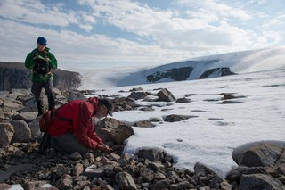 The team collects dead moss from the edge of a glacier on Baffin Island.