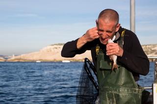 Pêcheur Marseille Ikejime 25