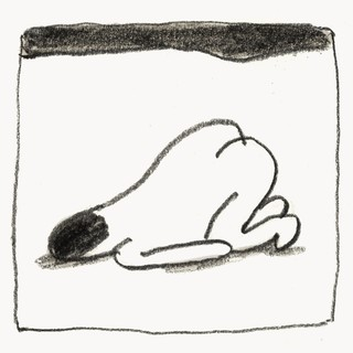 1548876044824-doggy_1