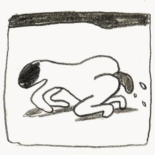 1548876058832-doggy_3