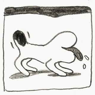 1548876065299-doggy_4