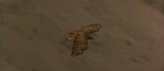 1548925727142-05-crows-zero-still-from-ladyhawke