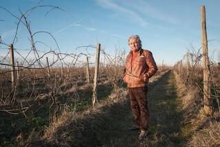 Graziano-tra-le-vigne