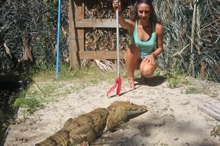 Marisa Tellez with her pet crocodile