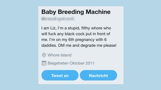 Screenshot eines Twitter-Profils
