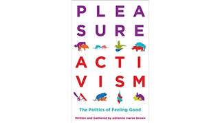 1549385735329-pleasure-activism