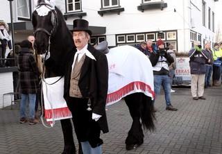 Het paard tijdens de intocht van Sint Piter