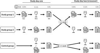Bier Wein Studie