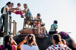 1549892552511-Elephant-Tourism-Nepal-7-of-13