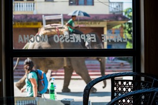 1549892757282-Elephant-Tourism-Nepal-12-of-13